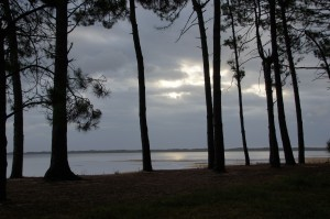 magnifique vue du lac de biscarrosse