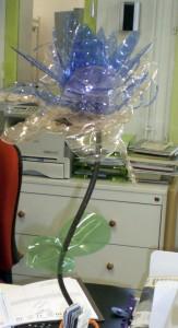 Une fleur de bureau à offrir…