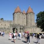Bassan à Carcassonne