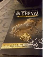 Dessine moi un cheval blog senioriales for Cabaret onirique