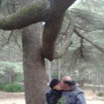Rando Forêt des cèdres