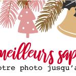 Photos:Les meilleurs sapins de Noël